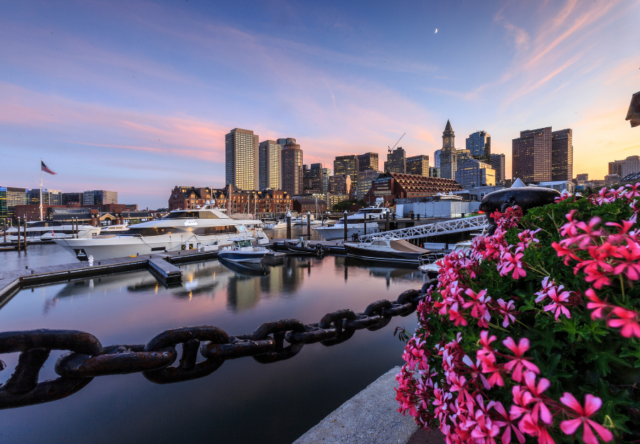 Hanging by the Harbor: Things to do on the Waterfront